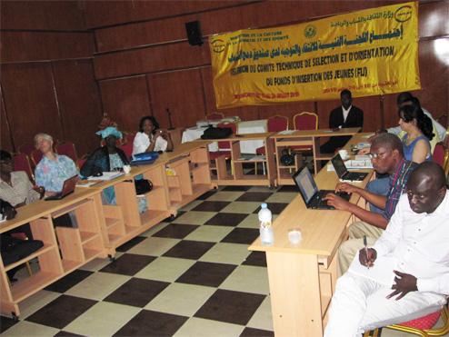 Réunion annuelle du CTSO du FIJ pour le financement des projets des jeunes