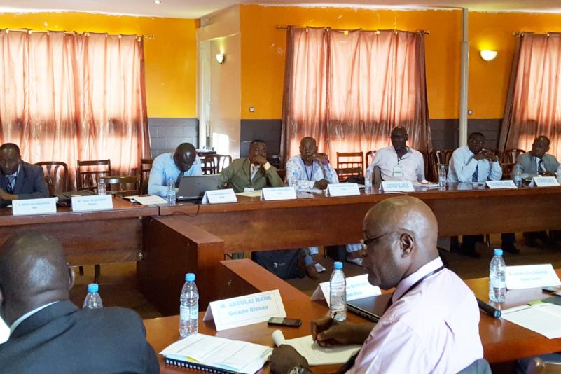 Renforcement de la gouvernance sectorielle: la CONFEJES réunit les Directeurs nationaux