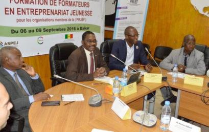 Le Réseau Jeunesse Francophone s'abreuve aux sources des outils pédagogiques du PPEJ de la CONFEJES