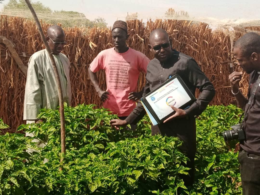 La CONFEJES effectue une mission de suivi des jeunes promoteurs du PPEJ au Sénégal
